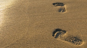 """The journey of a thousand miles begins with a single step."" - Chinese Proverb"